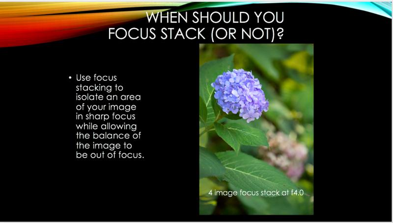 10 focus stack.png