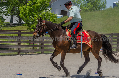 HorseFest at Farmpark