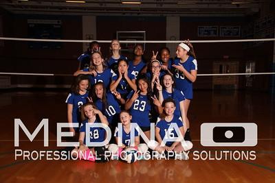 Varsity Volleyball Team Photos