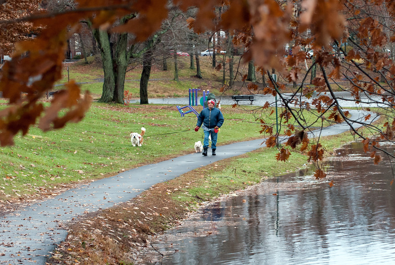 11/13/18  Wesley Bunnell   Staff  Mario Cortes walks his dogs Brownie and Fluffy through a cold and wet Stanley Quarter Park on Tuesday afternoon.