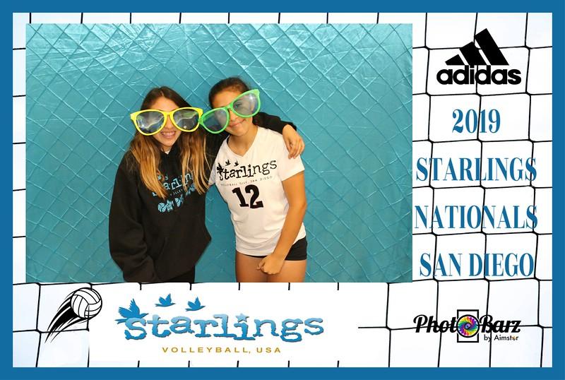 Starlings Volleyball (41).jpg