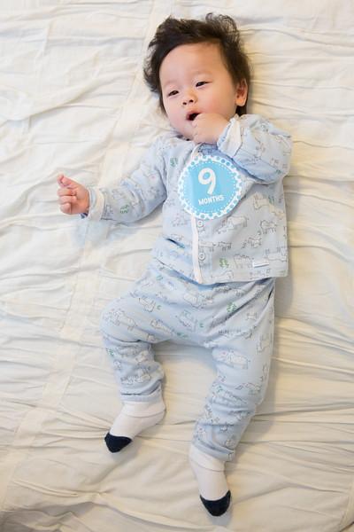 Seth 9 months-3764.jpg