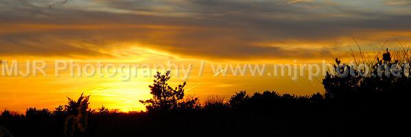 Sunsets 12 x 36 Prints