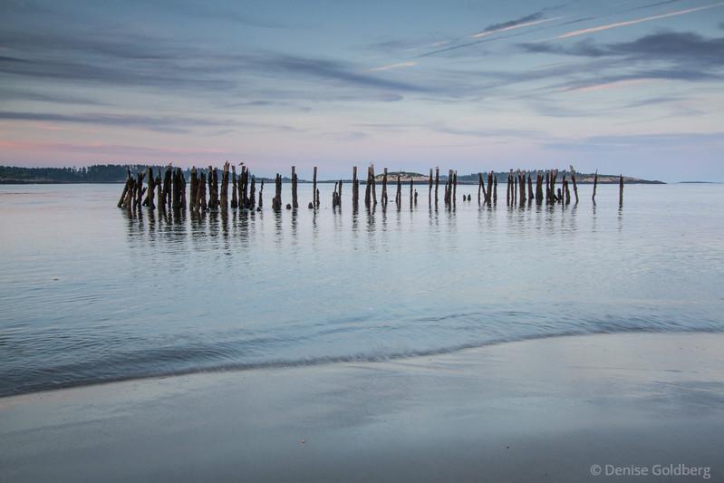 the blue hour, along the Phippsburg Peninsula, Maine