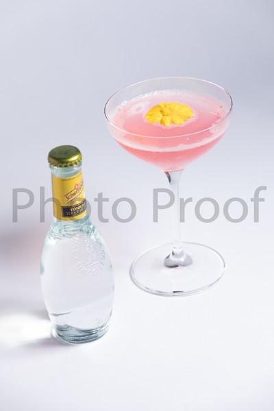 BIRDSONG Schweppes Cocktails 094.jpg