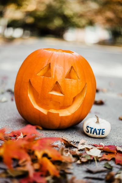 October 25, 2018 Halloween DSC_5732.jpg