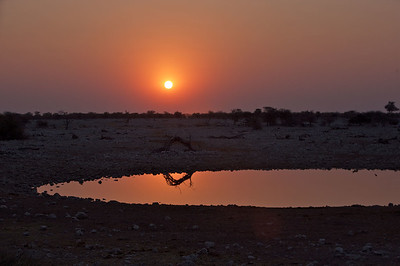 2009-sunrise2sunset