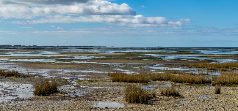 Blick über die «Golden Bay» Richtung «Farewell Spit»