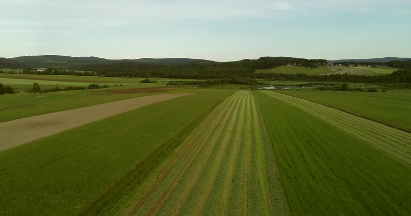 Aerial: flight over a mown meadow towards a lake and a village