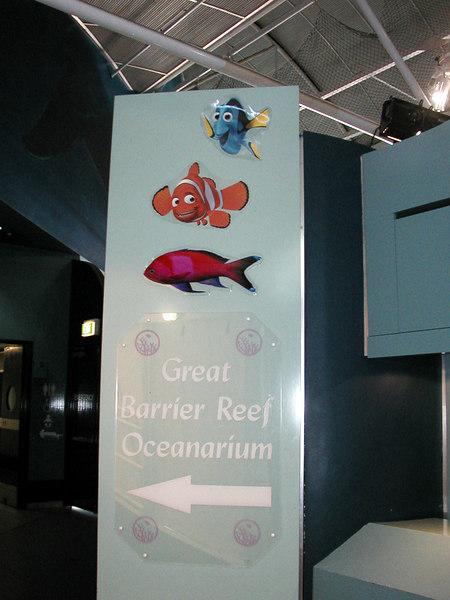 42.  Sydney Aquarium.JPG