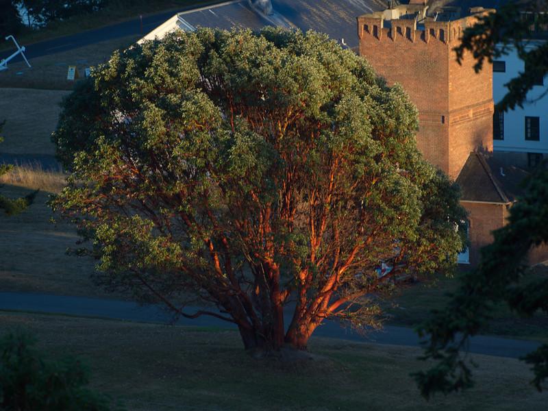 Fort Worden - August 2013 - 013.JPG