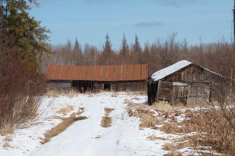 Abandoned farmstead Kolu Road Sax-Zim Bog MN IMG_2379.jpg