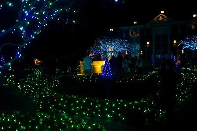 Botanical Garden Night of Lights 2011