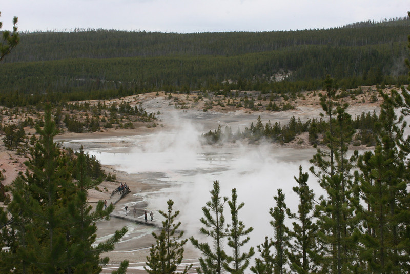Norris Geyser Basin - the hottest and most volatile thermal basin in Yellowstone - it sits at the intersection of three fault lines.