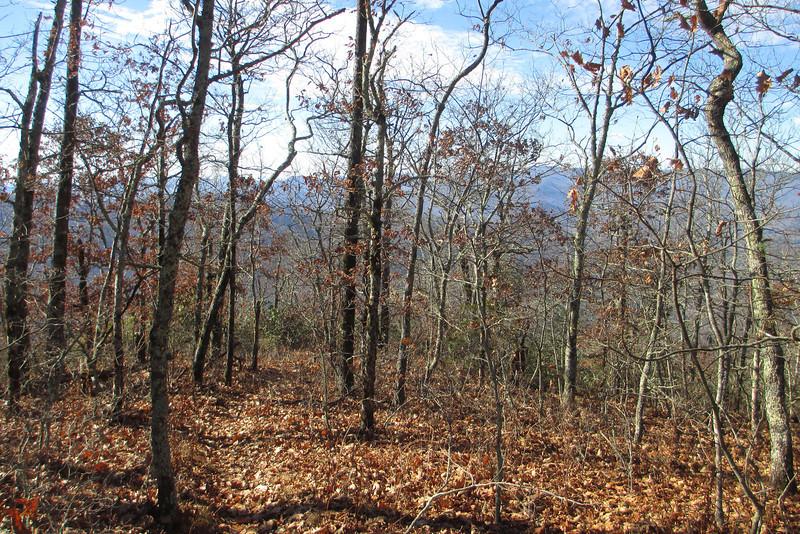 Whiterock Mountain Spur Trail