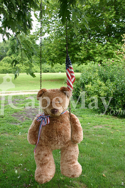 The Swinging Teddy Bear of Sunset Boulevard.jpg