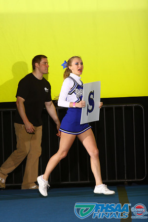 1A Large Non-Tumbling - Belleview