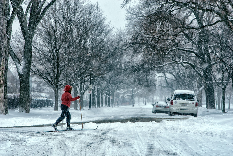 The cross country skier in the red parka