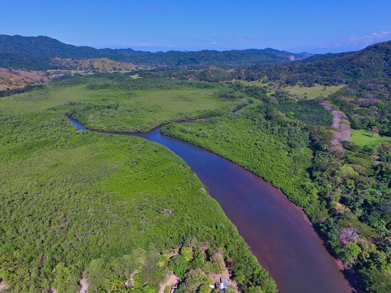 Manglar en Costa Rica - Aquí empieza la vida :)