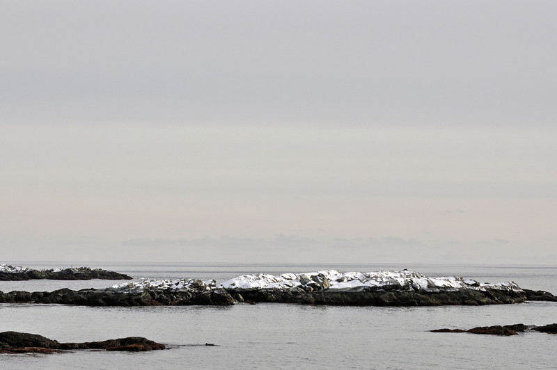 Ocean Drive 10.jpg