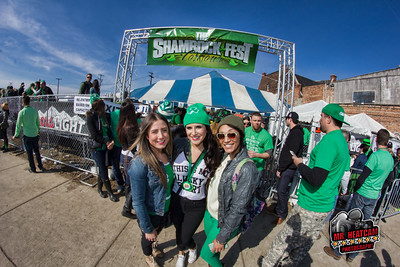 Shamrockfest 2015