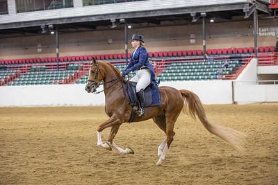 3-26-21 - Alabama Arabian Horse Association