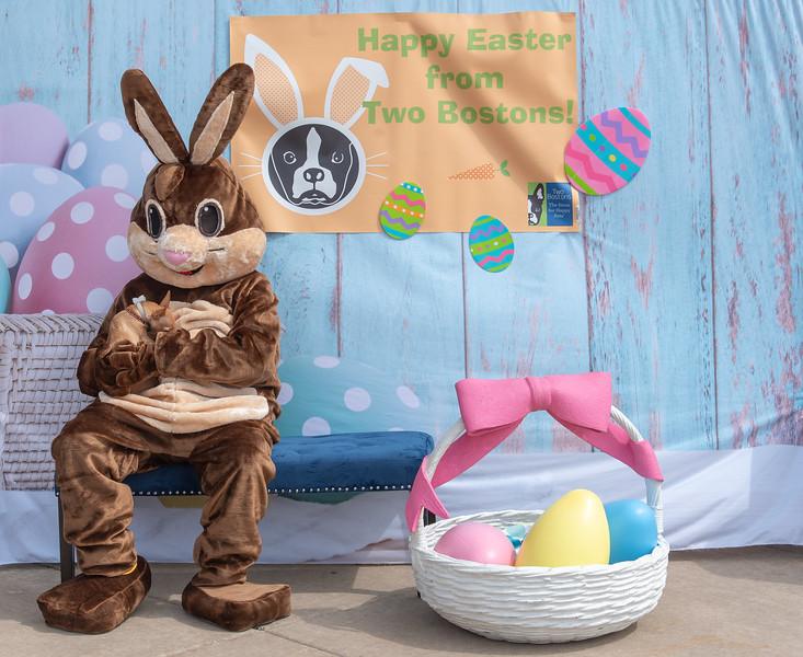 Easter2019TwoBostons-8281.jpg
