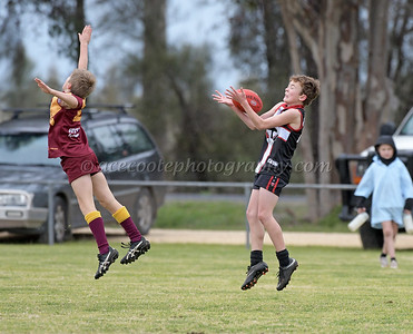 Junior Colts 2018 - Round16 v Border Districts