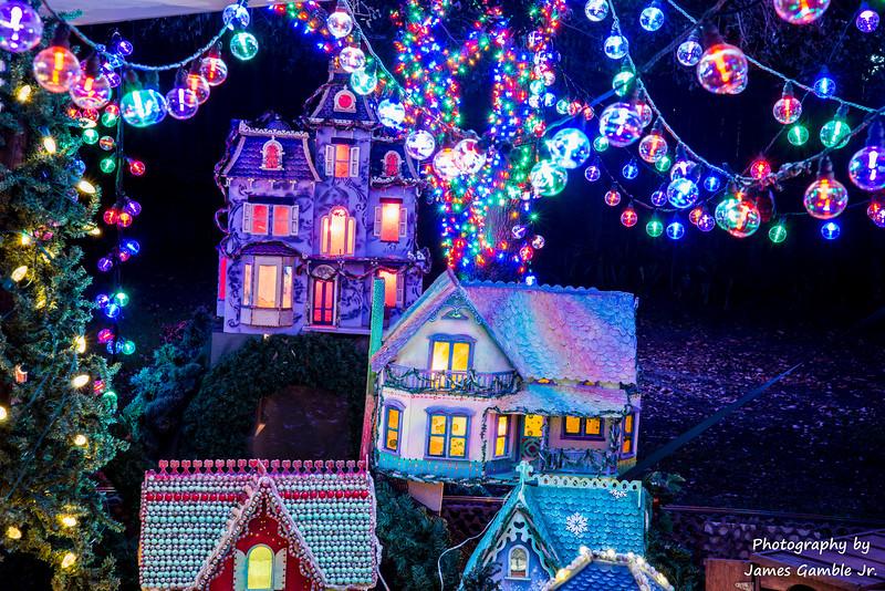 Houston-Zoo-Lights-3118.jpg