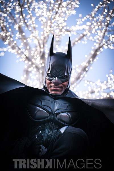 Bat-Man-Brampton-City-Hall-Portrait-1_SML.jpg