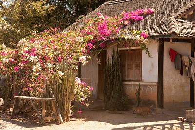 Kontum, Vietnam  2001 - present