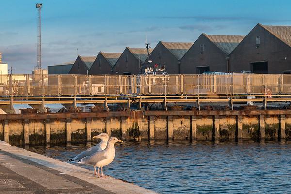 Shoreham Docks