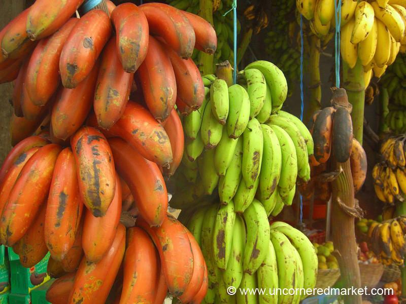 A Rainbow of Bananas - Kochi, India