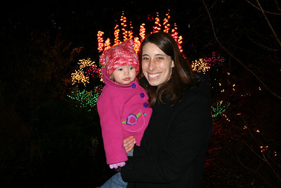 Bellevue Botanical Garden d'lights 2008