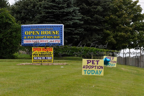 Airport Veterinary Hospital Open House 2015