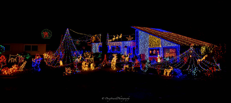 WSac_ChristmasLights-18.jpg
