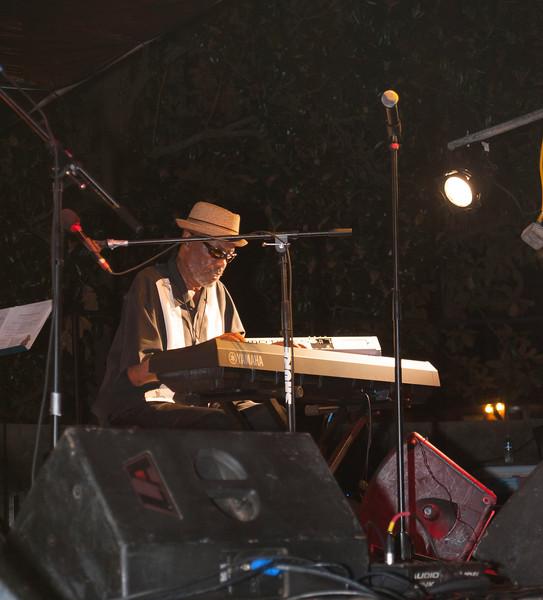Jazz Matters at Wrens Nest 119.jpg