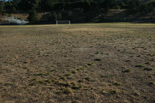 Merritt Field August 2009