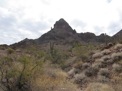 Castle Dome Peak - Feb. 26, 2011