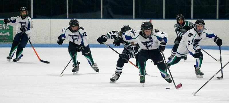 2016-Jan_29-Hockey-JPM0702.jpg