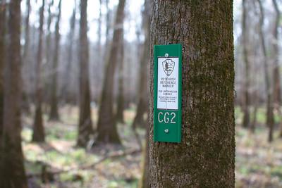 Congaree Hike