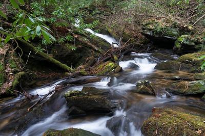 Headwaters of Davis Creek