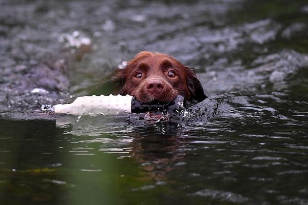 Water Training 17-8-21