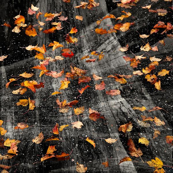 Dag_183_2012 okt 11_1317.jpg