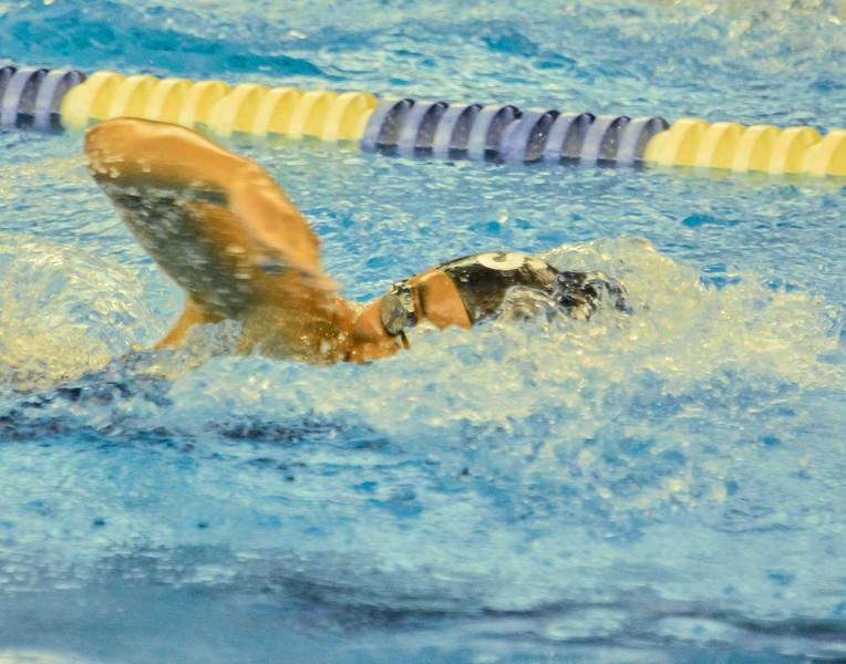 Swim Meet 11-09-13 (473 of 1544).jpg