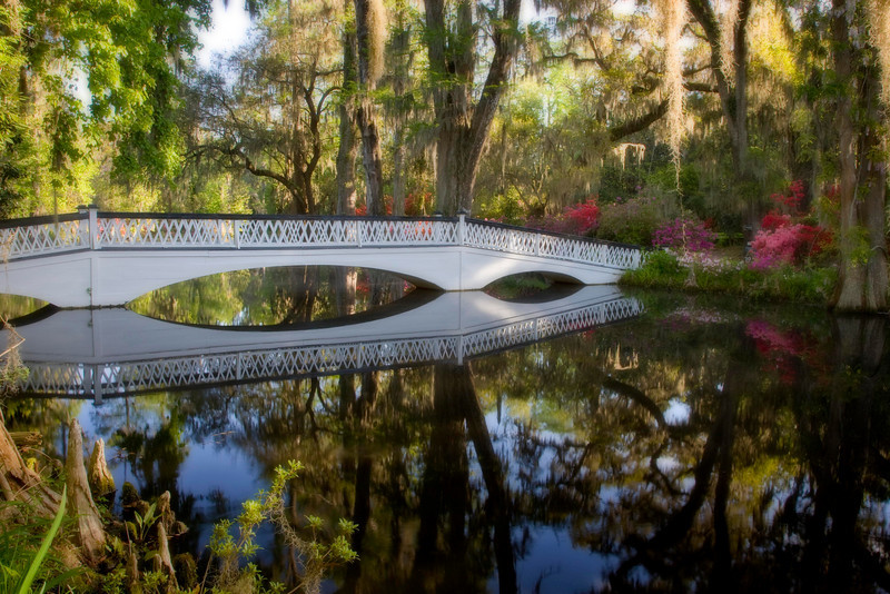 The famous and often photographed bridge reflected in the lake at Magnolia Gardens