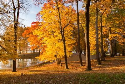 Ohio Fall Scenes