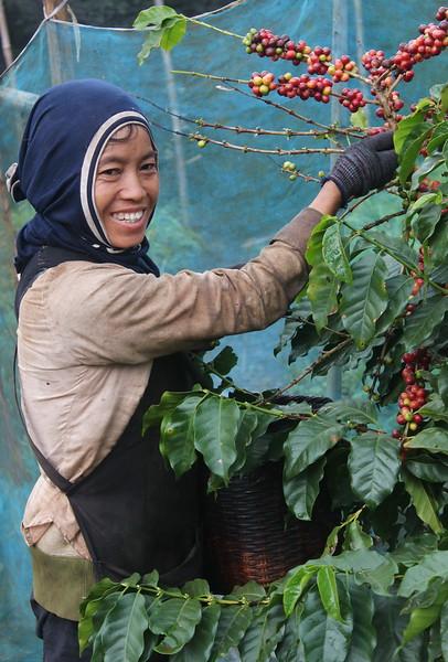 An Ahka woman at work