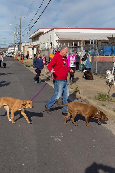Richmond Spca Dog Jog 2018-24.jpg