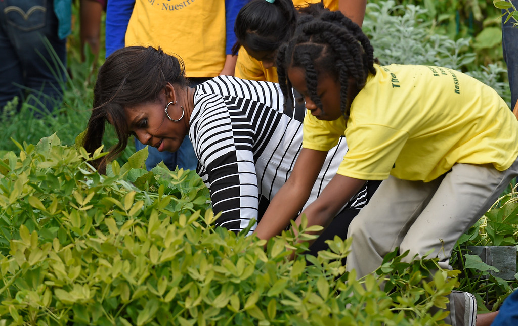. First lady Michelle Obama is joined by school children as they harvest peanuts in the annual fall harvest of the White House Kitchen Garden at the White House in Washington, Tuesday, Oct. 14, 2014. (AP Photo/Susan Walsh)